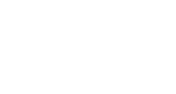 BBL BroadBand Light - Logo
